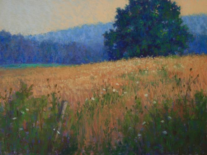 Golden_Evening-Donna-Timm