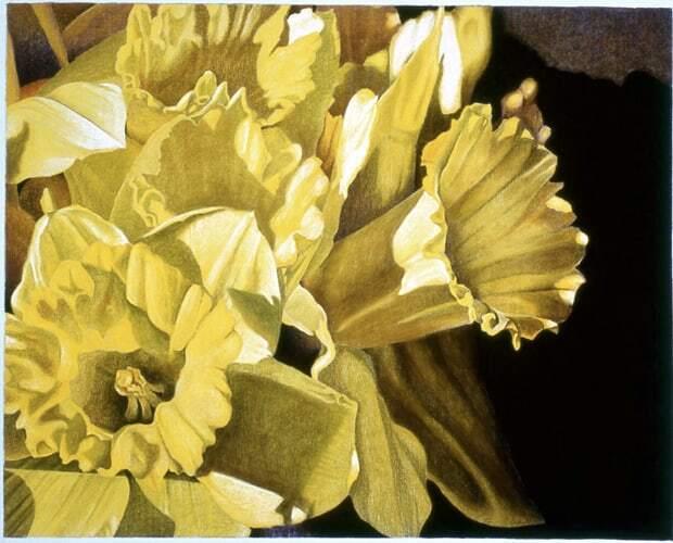 Spring Light-Virginia Carroll