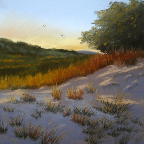Sunlight_Over_The_Dune-T.Roulin