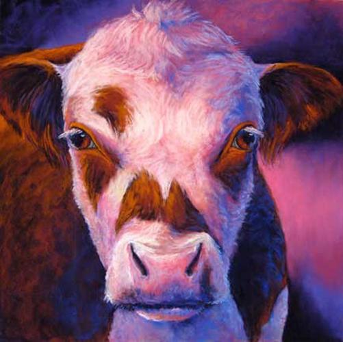 hereford-bull-carol-santora