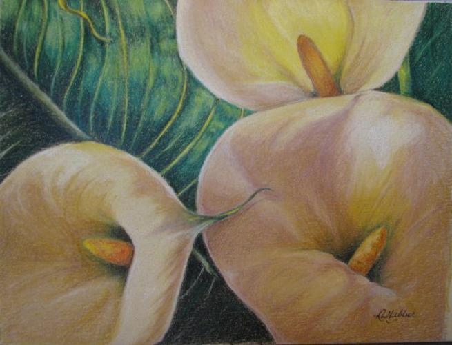lovely-lilies-roseanne-webber-LG