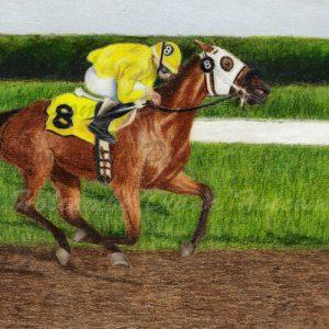 racehorse-diana-holcomb