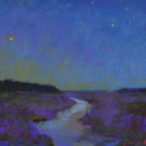 Carol_Strockwasson-door_county_starry_night