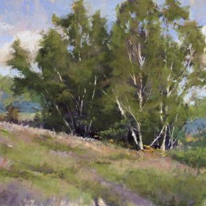 jacob_aguiar-birch_stand_near_hanover