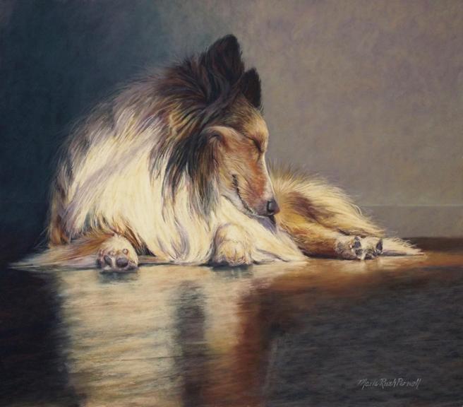 marla_parnell-sun_sleep