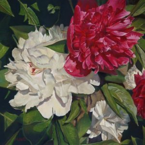 maryann_mullett-peonies_in_peak_contrast