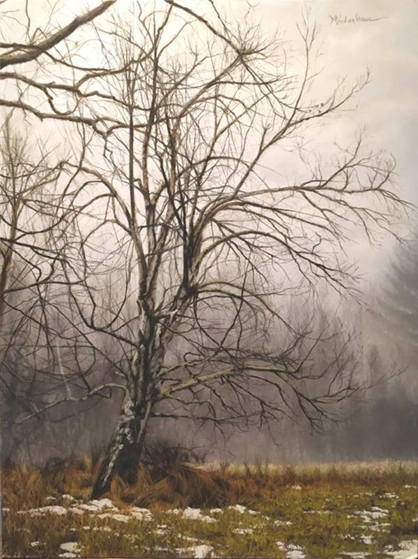 11826-rock_hill_tree_in_mist-51020178-5877