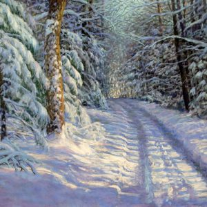 11826-snow_covered_lane-527201715-11077