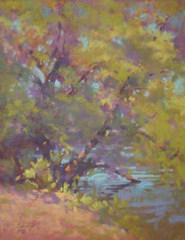 11826-springtime__lakeside-51020176-12763